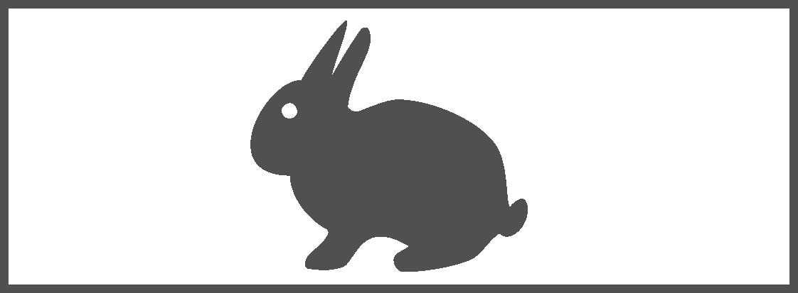 Paintball Bologna Caccia coniglio
